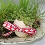 Kresse-Eier Annefaktur.de