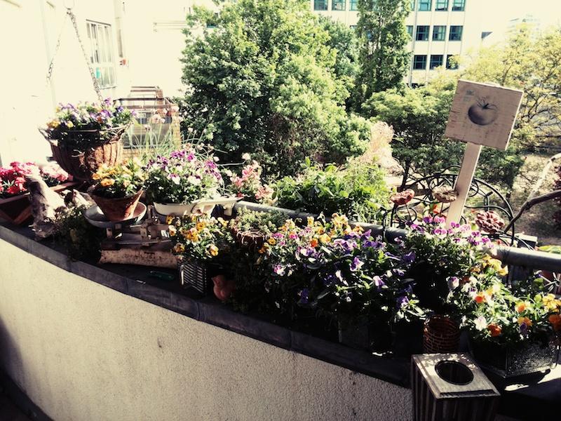 Balkon-Kräutergarten Annefaktur.de